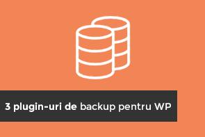 3-pluginuri-de-backup-pentru-wordpress